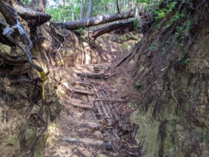 岩湧山09