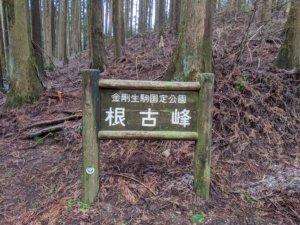 岩湧山12